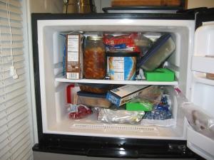 The Uneaten Freezer