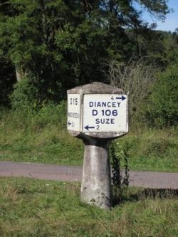 IMG 7559