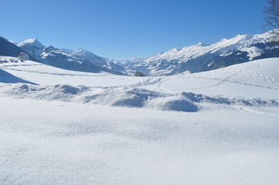 View near Aeschi