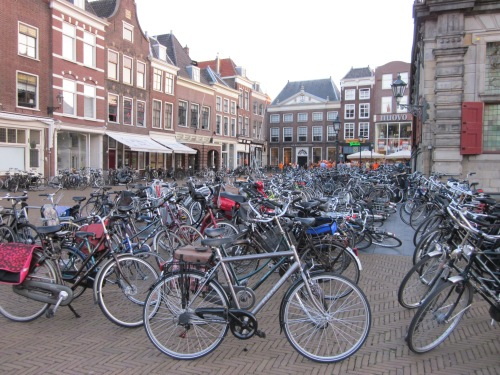 Bike parking in Delft, summertime
